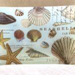Glazen zeepschaaltje Sea shells